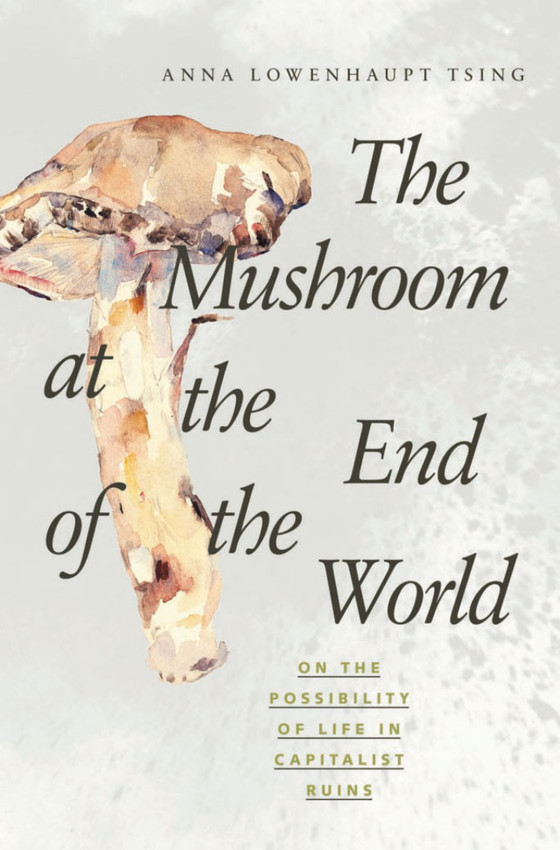 The Mushroom at the End of the World: On the Possibility of Life in Capitalist Ruins, 2015.