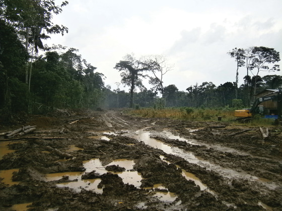 Displacement and deforestation in Providencia, Ecuador, 2015.